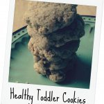 Whole Wheat & Flax Toddler Cookies {Recipe}
