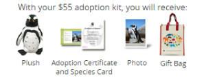animal adoption kit