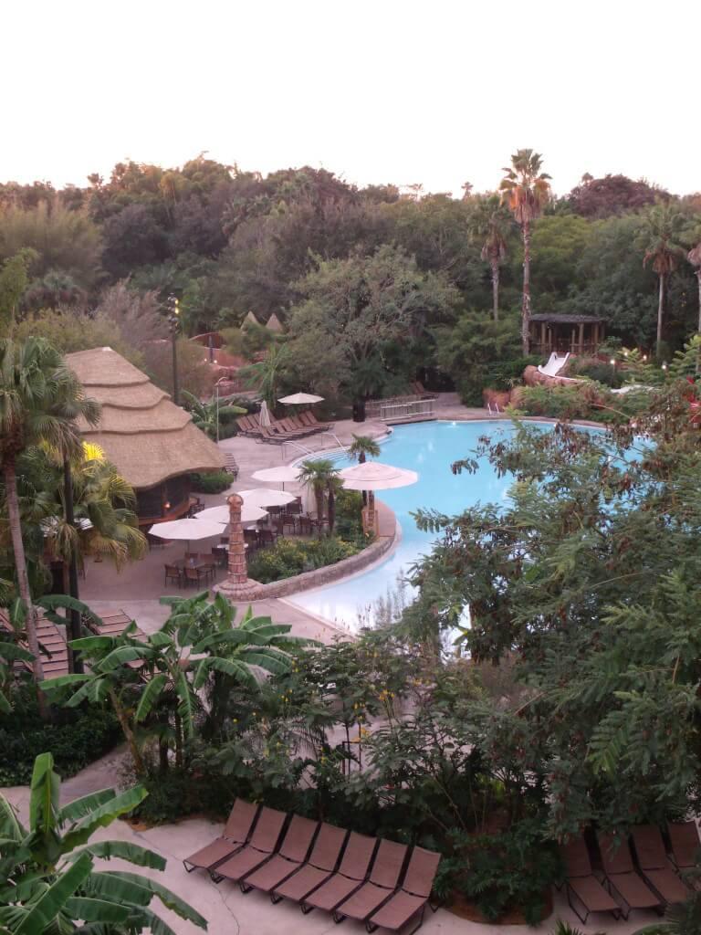 animal kingdom lodge resort pool