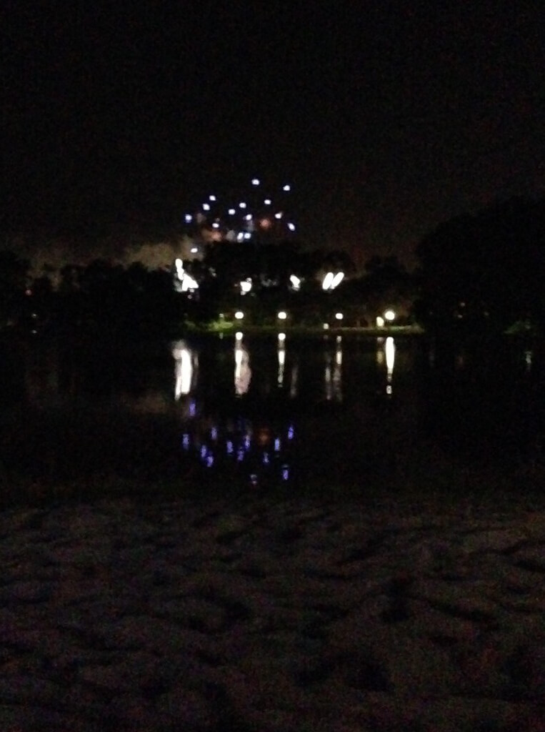 Epcot's Illuminations fireworks from the Martinique beach