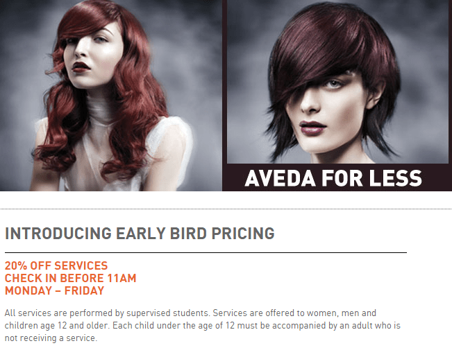 2016-09-09-21_03_02-early-bird-pricing