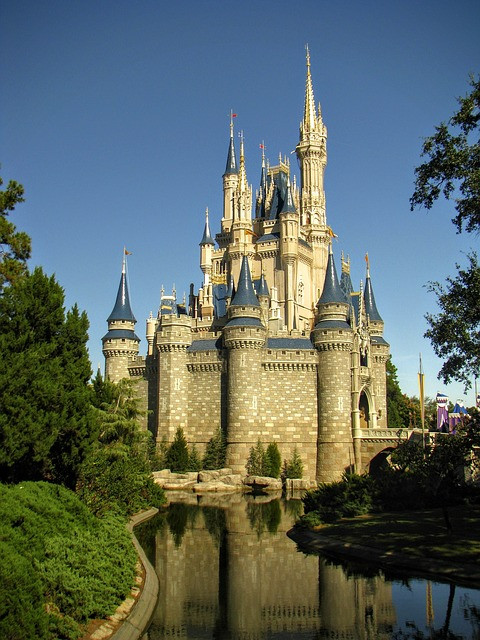 disney-world-978132_640