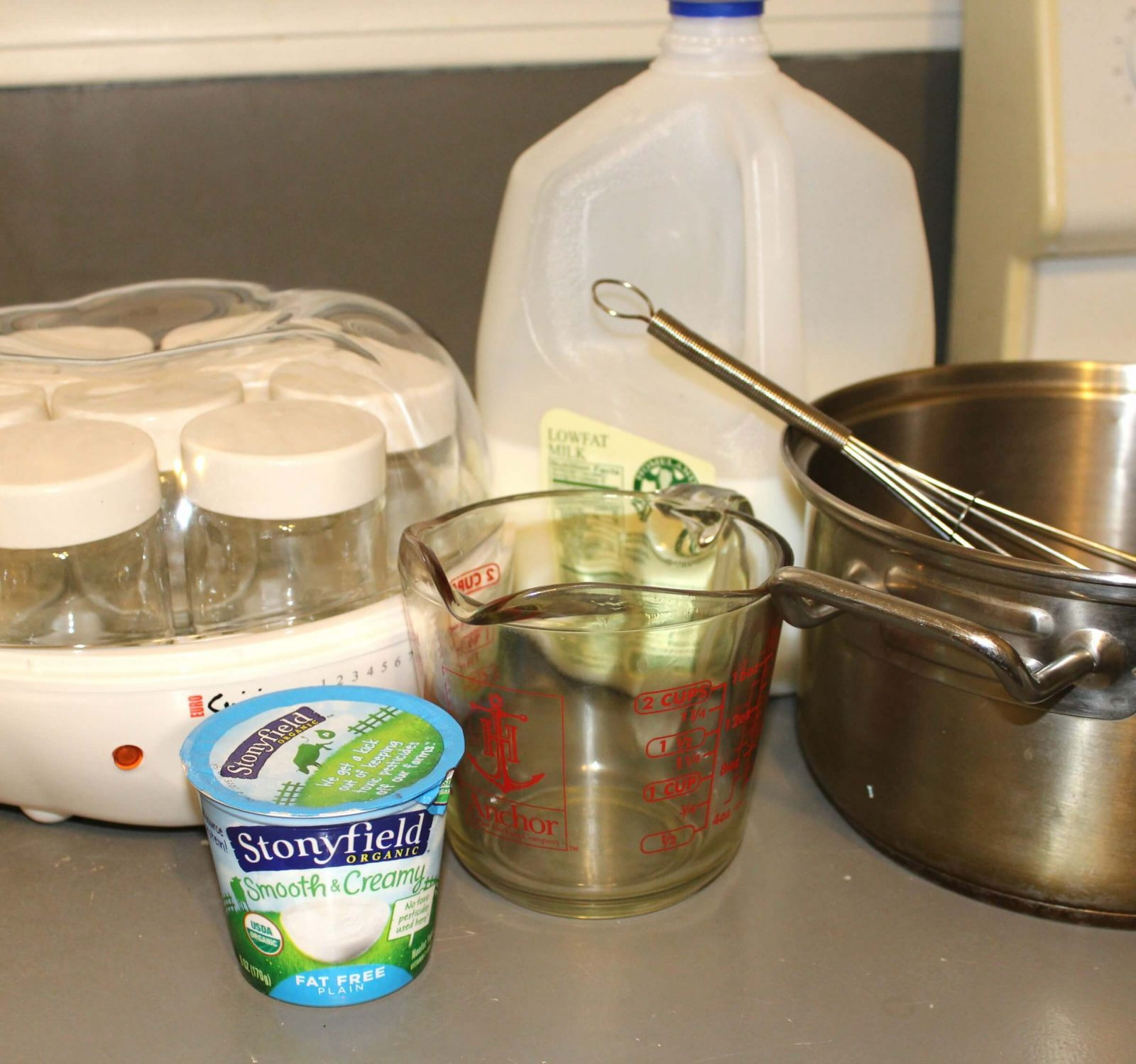 ingredients and supplies to make yogurt