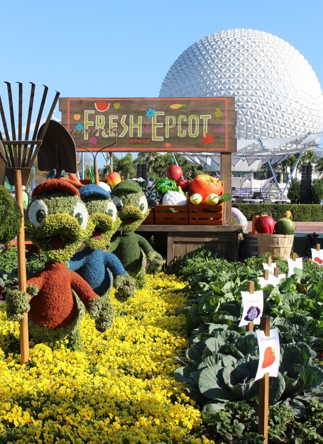 Tips For Visiting Epcot Flower Garden Festival With Kids The Frugal South