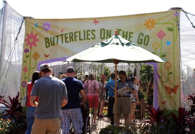 butterfly garden entrance