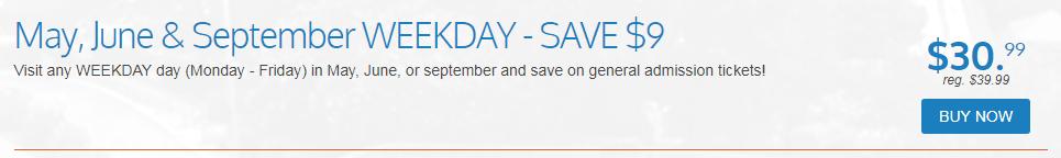 discount special
