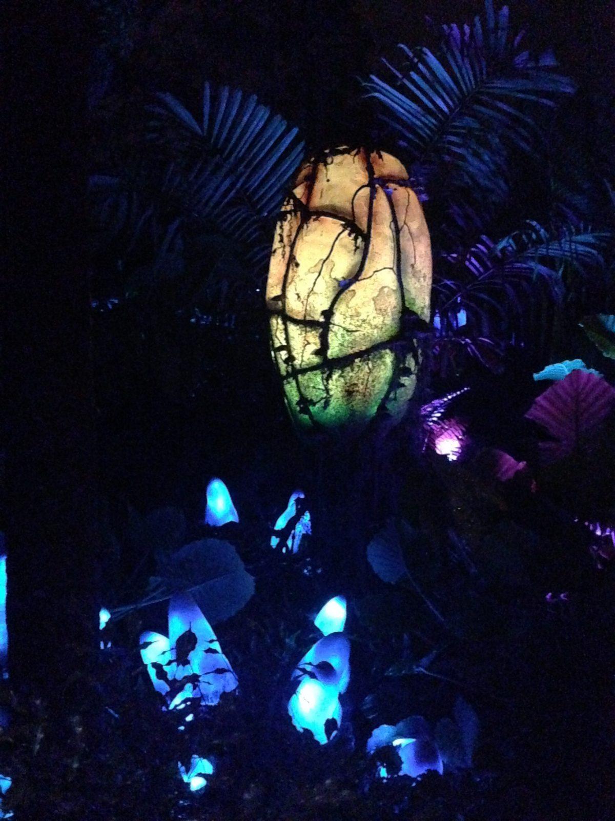 Glowing plants in Pandora