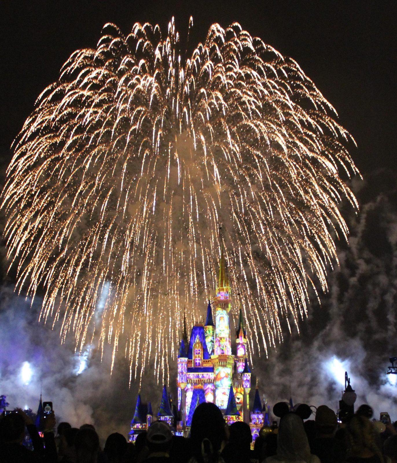 Fireworks at night over Cinderella's castle in Magic Kingdom