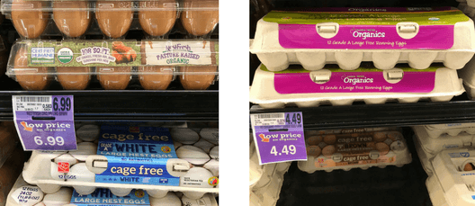 eggs at the store