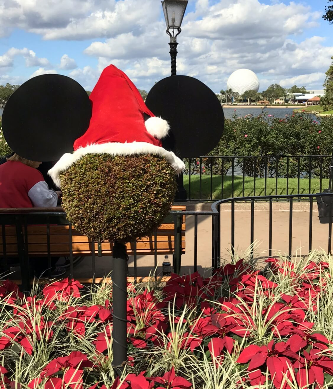 bush with Mickey Mouse ears and santa hat
