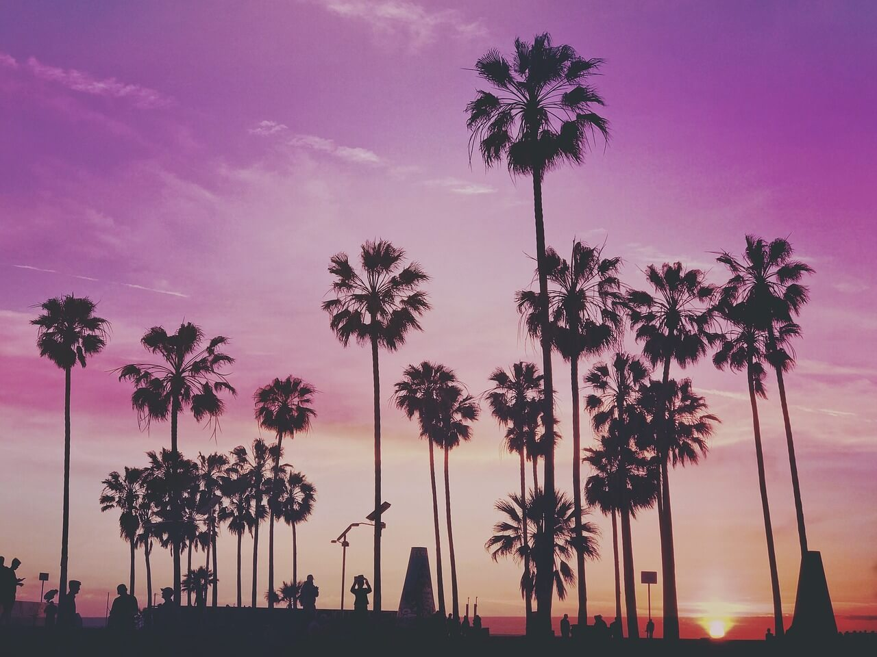 Purple sky sunset