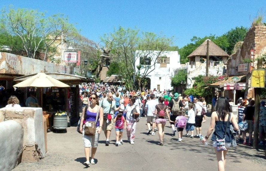 crowd of visitors at animal kingdom