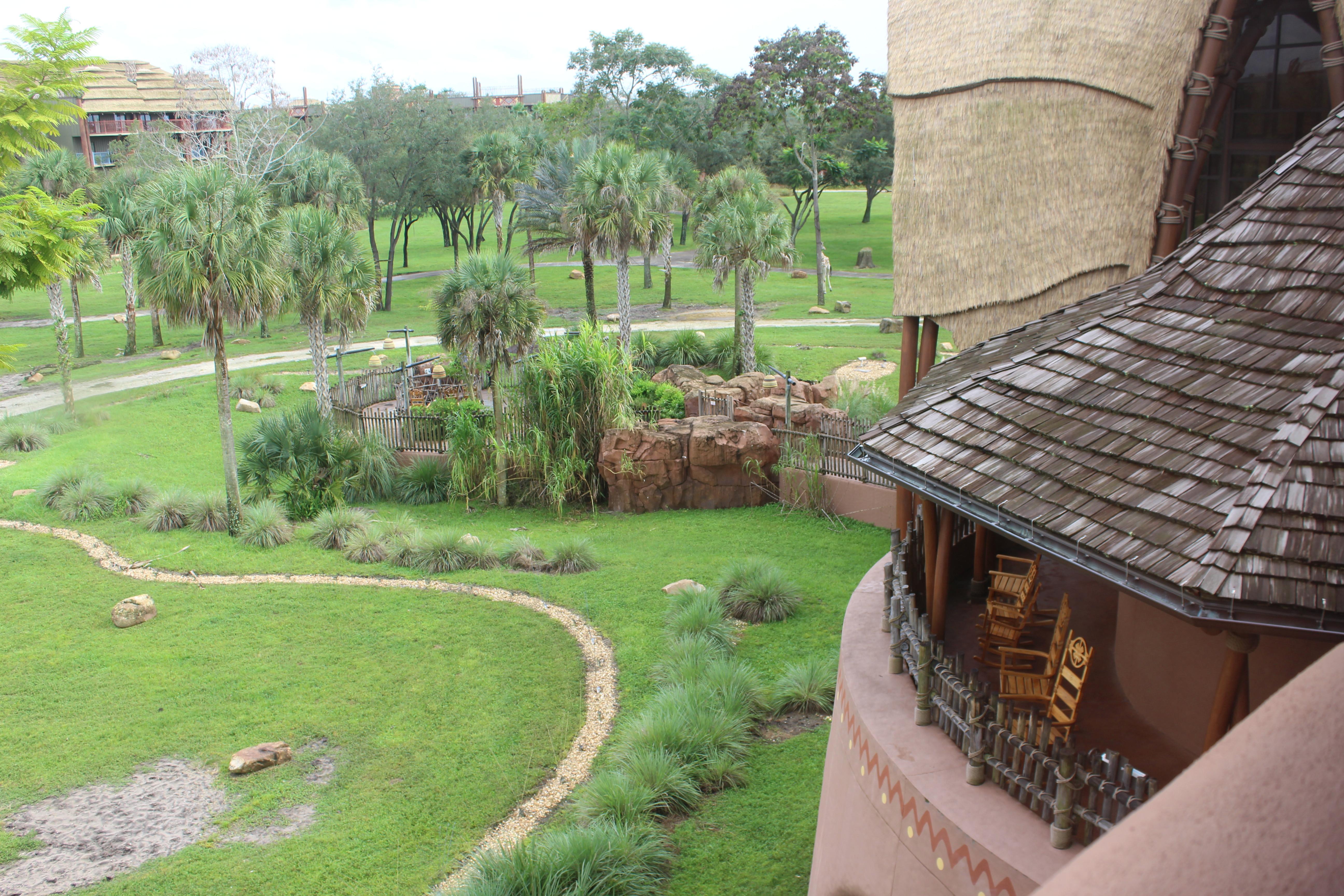 A public savanna viewing area at Kidani Village