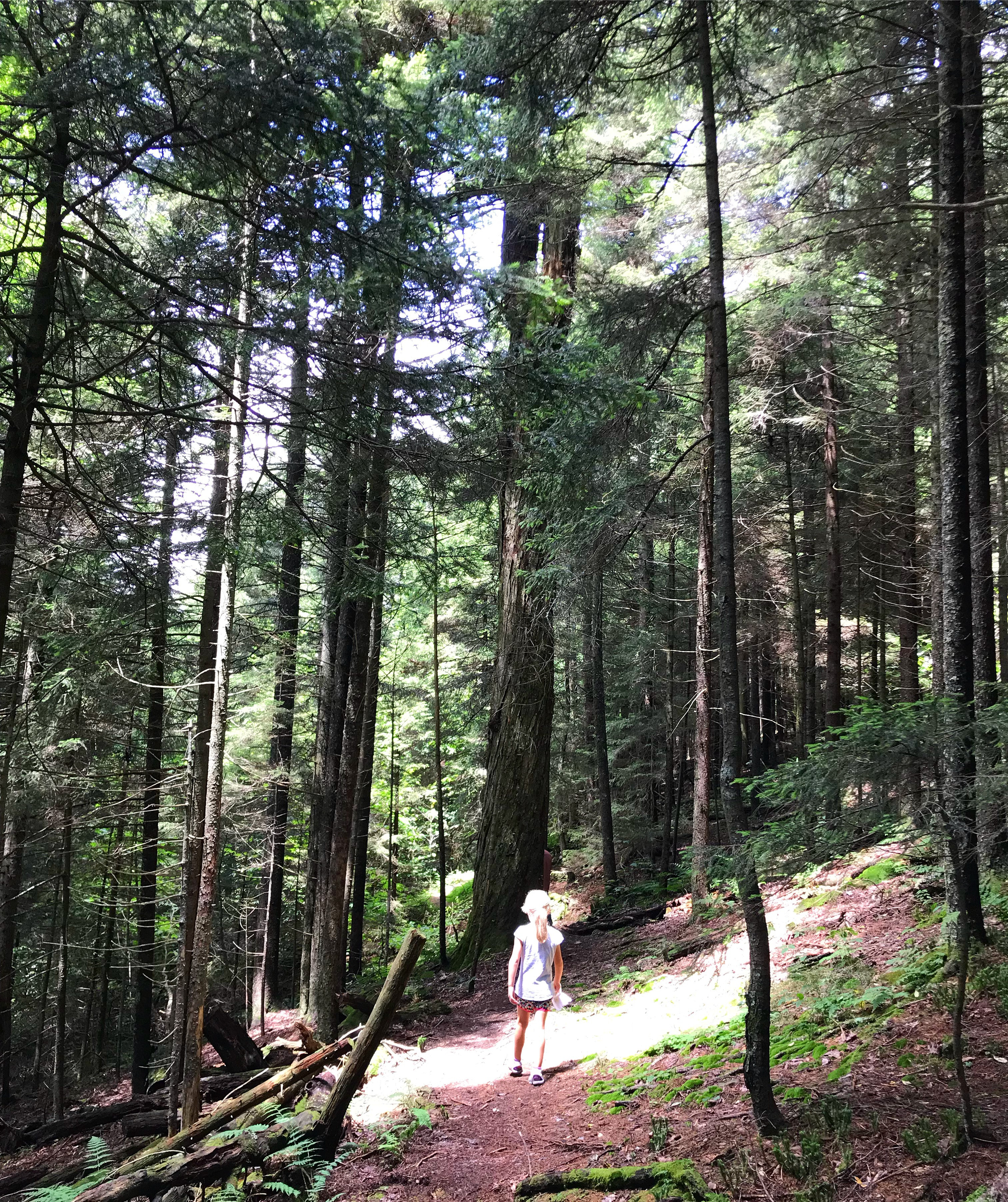 Girl hiking in Smoky Mountains - things to do in Pigeon Forge TN