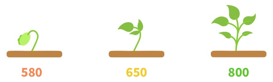 cartoon of plant growing with credit scores unnderneath